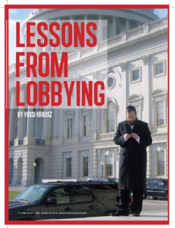 Ami Article - Lessons from Lobbying